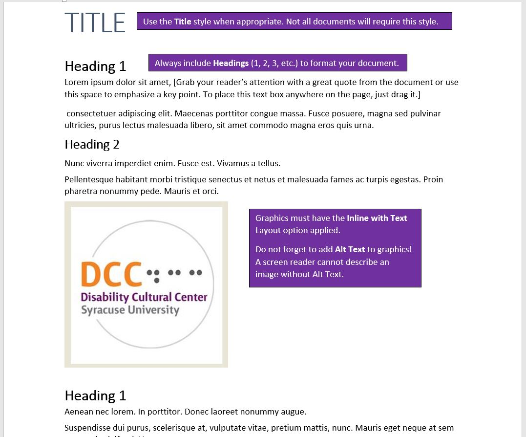 Word document with Style and graphic requirements indicated